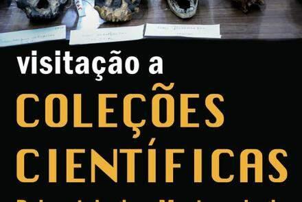 Visitas a Coleções Científicas -  Paleontologia e Mastozoologia - PUC Minas